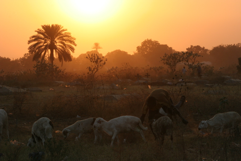 South Sudan sunset, 2